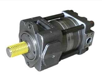 QT63-100-A QT Series Gear Pump